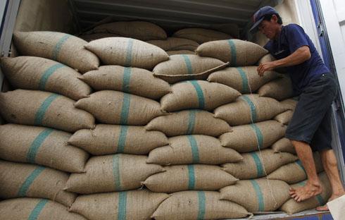 Việt Nam trở thành nước xuất khẩu cà phê số một thế giới