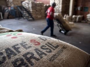 cafe Brazil-xk