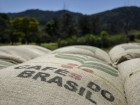 Coffee Rises as Brazil Plans Aid for Farmers